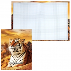 Блокнот 7БЦ, А6, 80 л., обложка ламинированная, клетка, STAFF, 'Тигровый', 110х147 мм, 120949