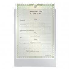 Папка-файл для свидетельства о рождении, 190х263 мм, без отверстий, 0,12 мм, ДПС, 1746
