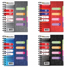 Тетрадь-блокнот 120 л., A5, 170x215 мм, BRAUBERG, линия, гребень, обложка пластиковая, 4 разделителя, 'Rich', 4 вида, 401791