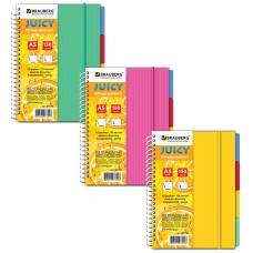 Тетрадь-блокнот 150 л., A5, 170x215 мм, BRAUBERG, линия, гребень, обложка пластиковая, на резинке, 4 разделителя, 'Juicy', 3 вида, 401795